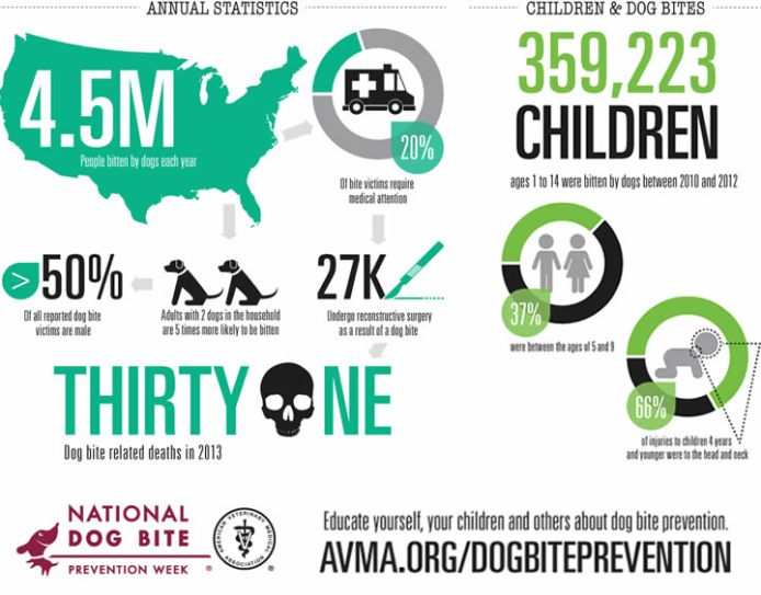 biteprevention-infographic